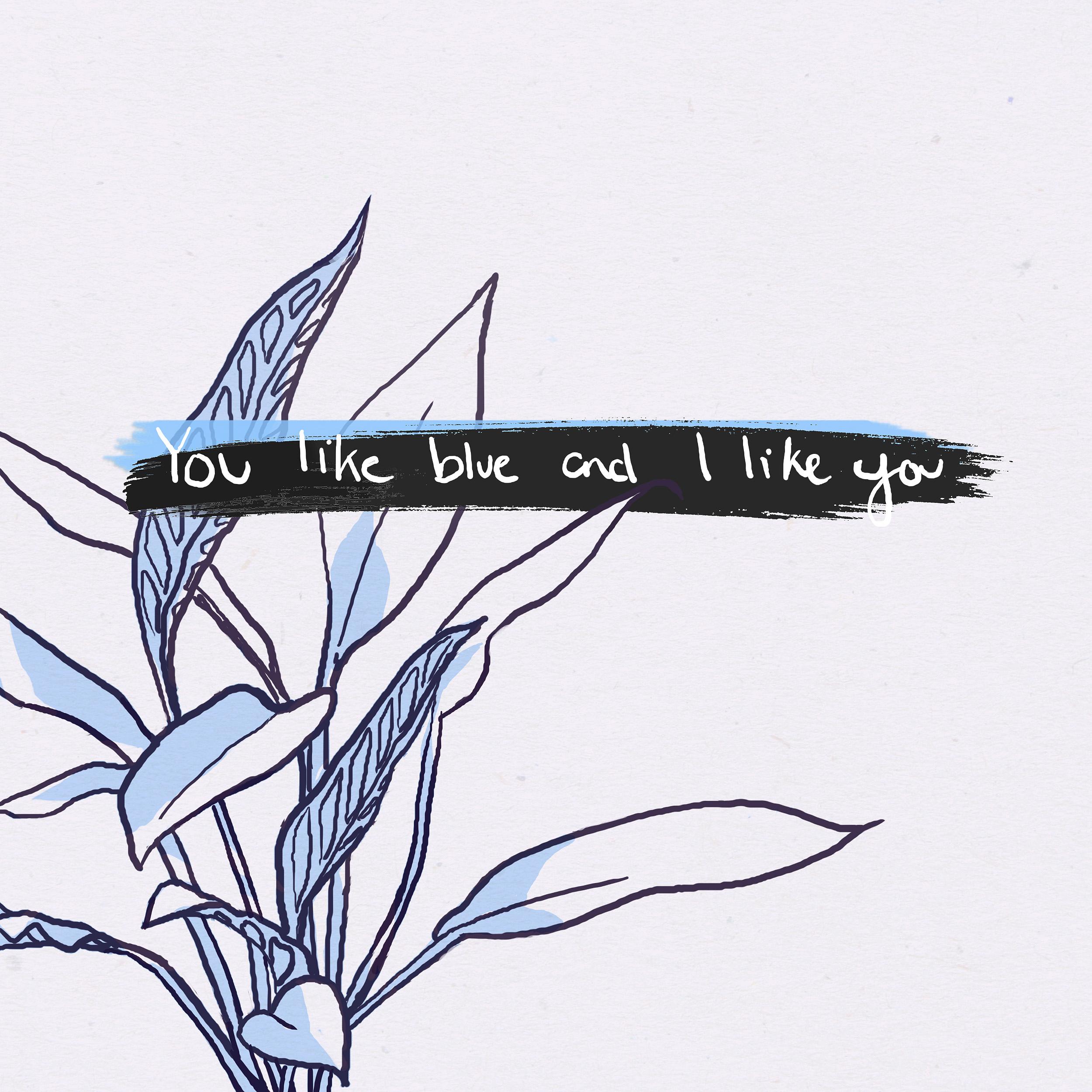 You Like Blue And I Like You
